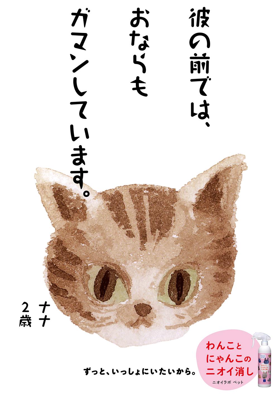 PET11