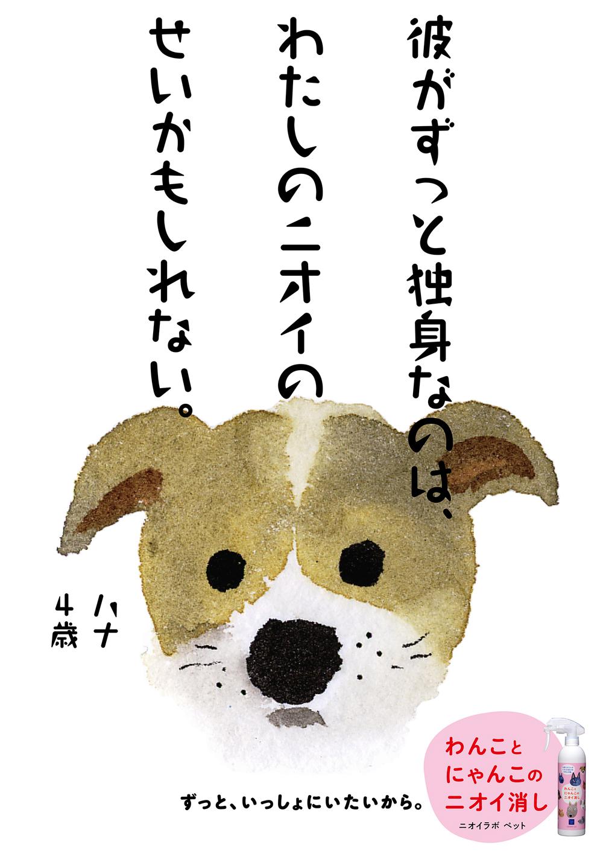 PET12