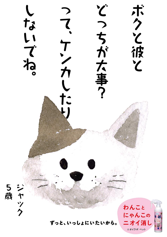 PET13