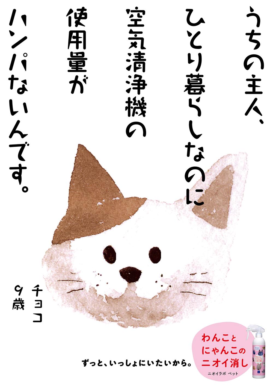 PET16