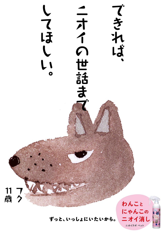 PET19