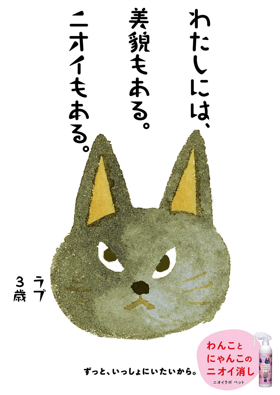 PET26
