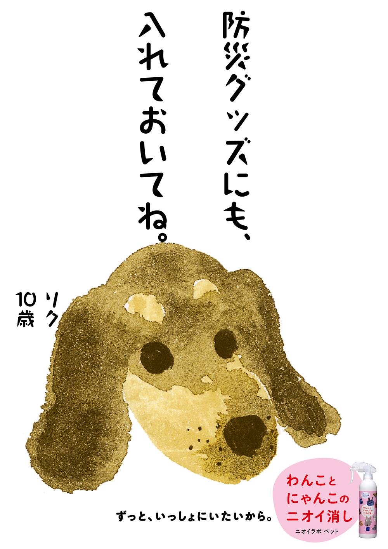PET33