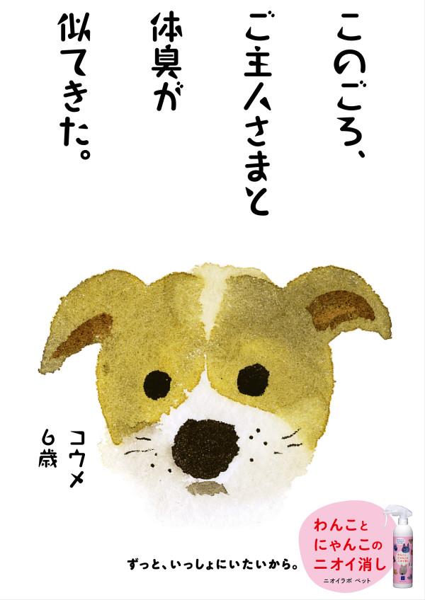 PET01