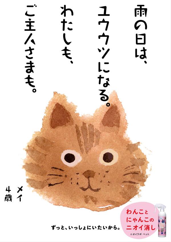 PET06